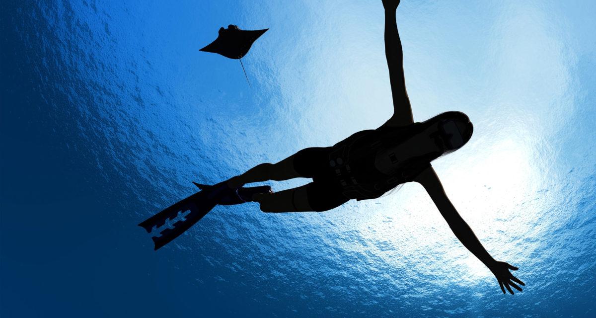 Aquatic 4